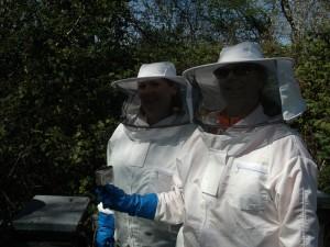 Beekeeping 1-1